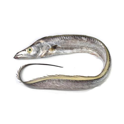 Peixe Espada Branco - Peixe de Mar