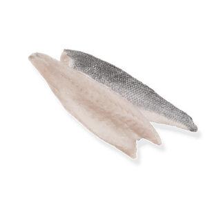 Robalo em Filetes - Peixe de Aquicultura